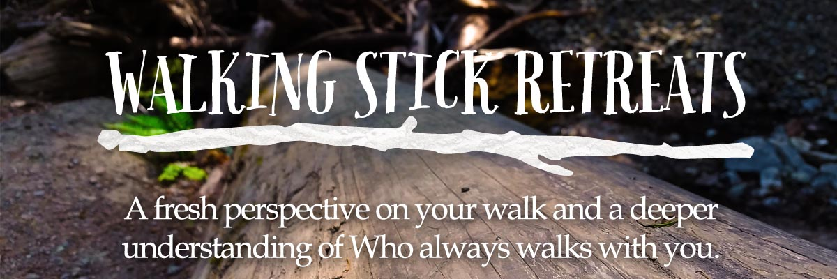 HeaderWalkingStick1
